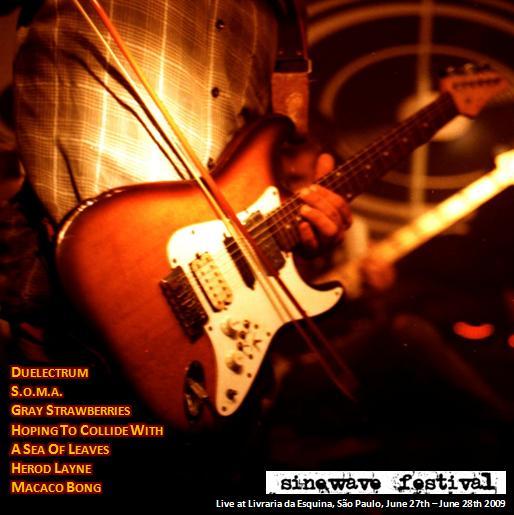 VARIOUS ARTISTS – I Sinewave Festival Live (2009)