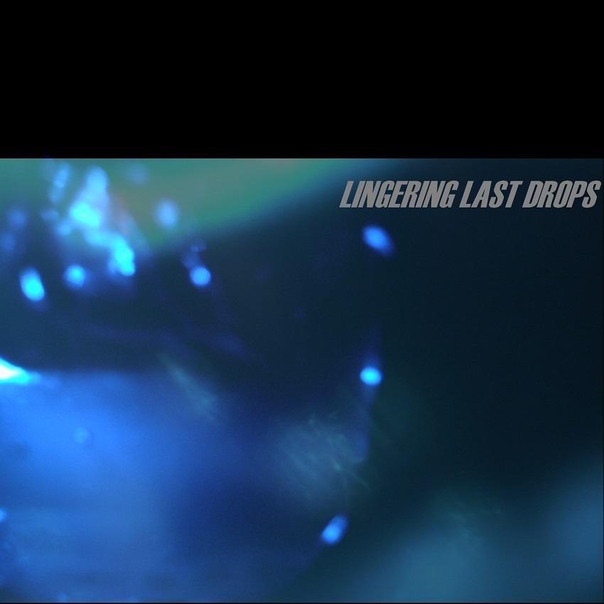 LINGERING LAST DROPS – The Lingering Last Drops (2009)